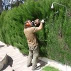 mantenimiento-jardines-valencia-04