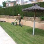mantenimiento-jardines-valencia