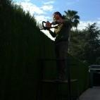 mantenimientos-de-jardines-02