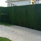 mantenimientos-de-jardines
